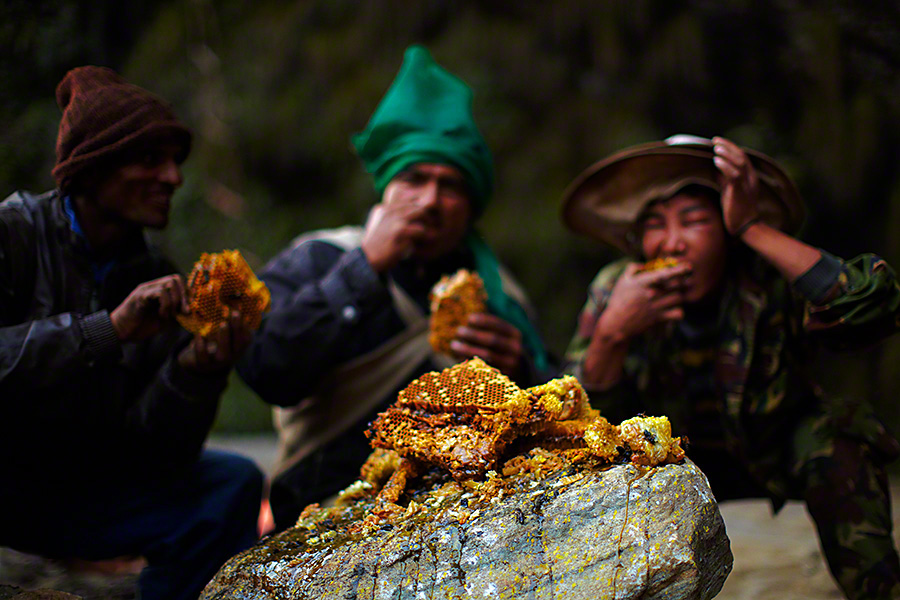 honey-hunters-nepal-andrew-newey-11