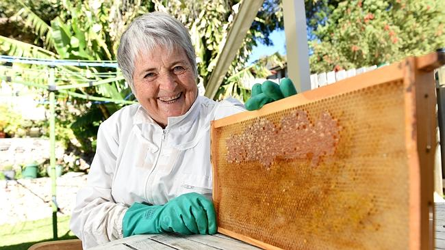 Bee Swarms Central Coast